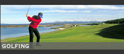 mo_golf